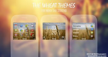 Wheat theme for nokia C3-00