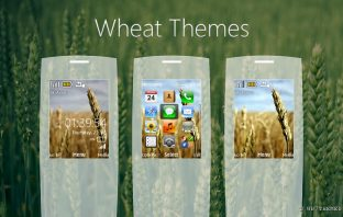 Wheat themes 6303i classic 6300 6700 5310 5610 5130 s40 240x320
