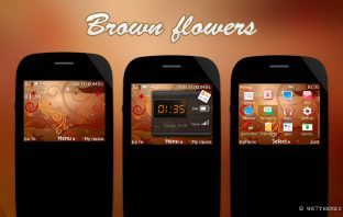 Brown flower bright theme s40 320x240