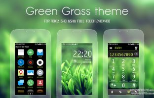Green grass theme Asha 311 306 305 308
