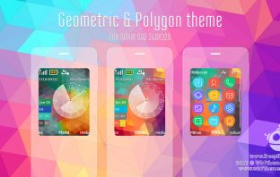 Geometric and polygon theme X2-00 X2-02 Asha 207 208 301