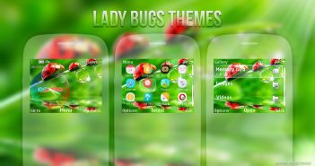 Lady Bugs theme for Nokia s40 320x240 eg: Asha 210 C3-00 X2-01