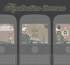 Aesthetics with clock widget theme X2-01 C3-00 Asha 210 302,